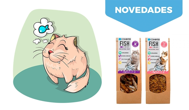 Fish For Cats by Cominter. ¿Porque a los gatos les encanta el pescado?.