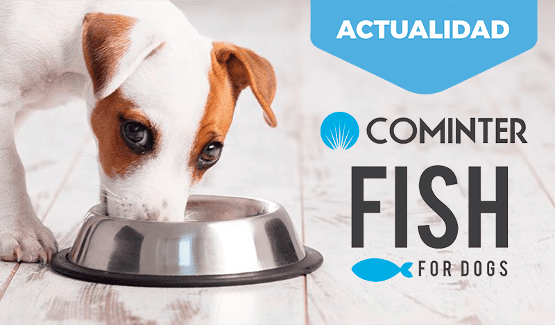 Fish For Dogs. A las mascotas les encanta la alimentación natural.